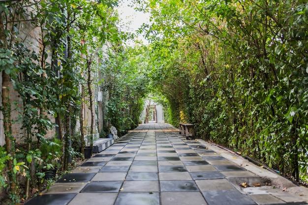 Tunnelweg met groene bladeren wordt behandeld dat