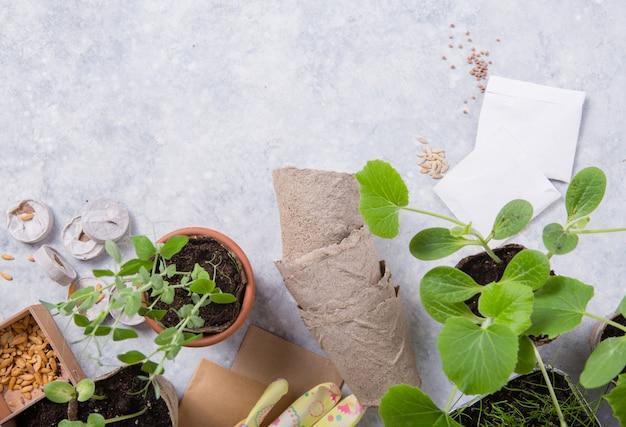 Turfcontainer met grond, planten van een plant met tuingereedschap. tuin, plant concept. werken in de lentetuin op betonnen tafel. plat lag, bovenaanzicht. v