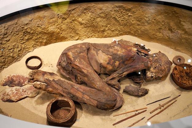 Turijn, itali - 19 augustus 2021: mummie in foetushouding. mummificatie van één lichaam tijdens de egyptische beschaving, egyptisch museum van turijn, italië