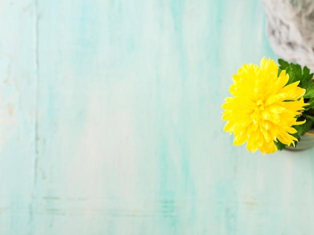 Turquoise achtergrond met gele bloem.