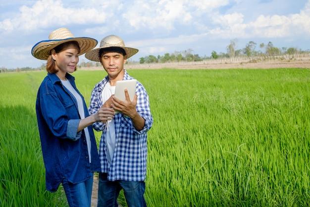 Twee aziatisch landbouwerspaar die tablet in het padieveld gebruiken