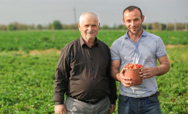 Twee boeren verzamelden een mand met oogst, aardbeien van hun plantage