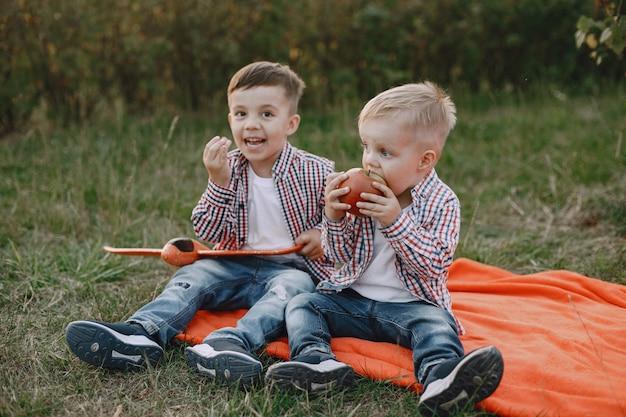 Twee broers spelen in een zomerveld