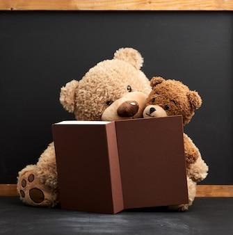Twee bruine teddyberen zitten met een boek op een zwarte achtergrond