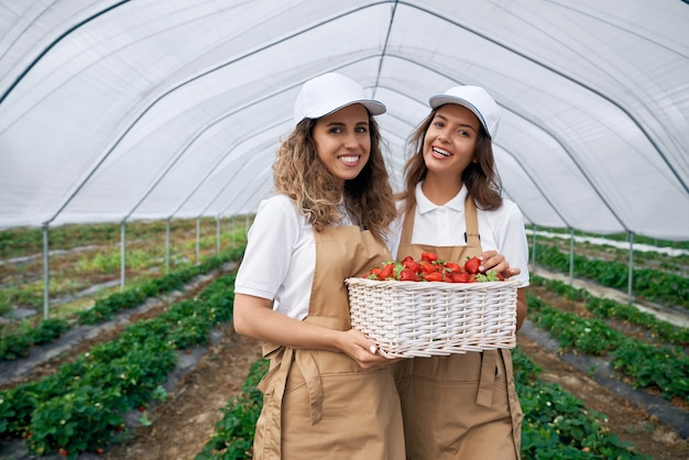 Twee brunettes met mandje met aardbeien in kas