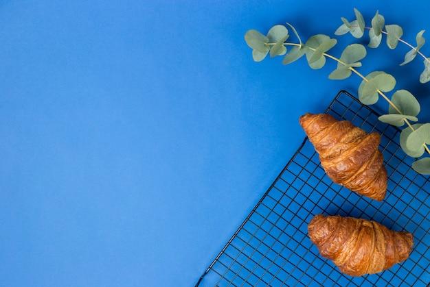 Twee croissants en eucalyptusbladeren op blauwe achtergrond. goedemorgen of voedselconcept. plat lag banner, bovenaanzicht, kopie ruimte.