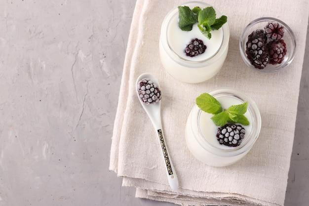 Twee delen van zelfgemaakte natuurlijke biologische yoghurt met bramen en munt in glazen potten op een grijze ondergrond, close-up