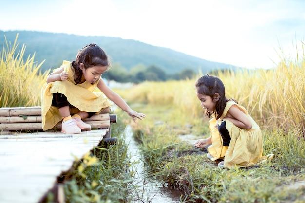 Twee gelukkige aziatische kleine kindmeisjes die pret hebben samen te spelen en op bamboegang met stroom op het padiegebied zitten in uitstekende kleurentoon
