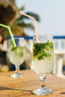 Twee glazen beroemde cubaanse cocktail - mojito.