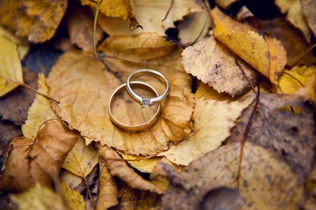 Twee gouden trouwringen met diamanten liggend op oranje herfstbladeren