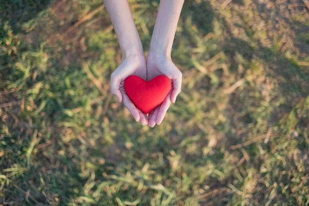 Twee handen die rood hart met groene grasachtergrond houden.