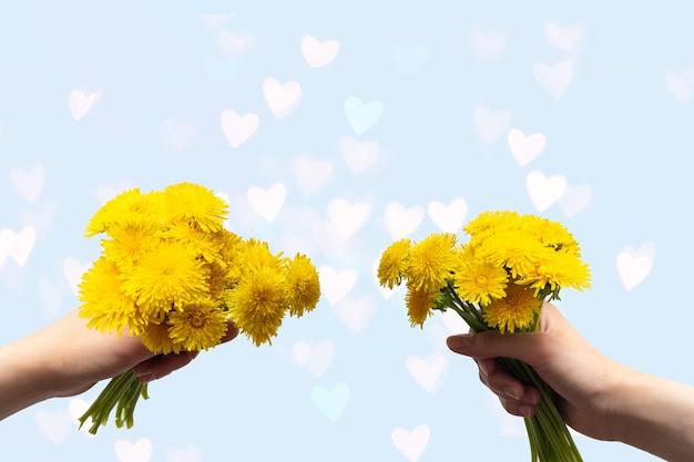 Twee handen met boeketten van gele wilde bloemen paardebloemen in de hand op een blauwe achtergrond met bokeh in de vorm van transparante harten, kopieer ruimte, kaart. liefde, romantiek, huwelijksconcept.