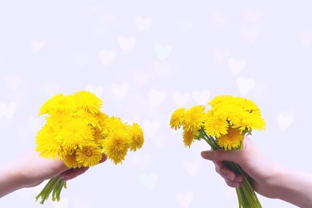 Twee handen met boeketten van gele wilde bloemen paardebloemen in de hand op een lichte achtergrond met bokeh in de vorm van transparante harten, kopieer ruimte, kaart. liefde, romantiek, huwelijksconcept.