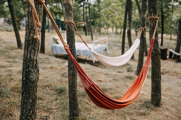 Twee hangmatten vastgebonden aan bomen in een bos