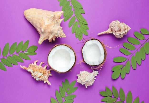 Twee helften van gehakte kokos op paarse achtergrond met groene bladeren en zeeschelp