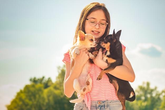 Twee honden in de armen van een tienermeisje. chihuahua-hond. zwart-witte chihuahua.