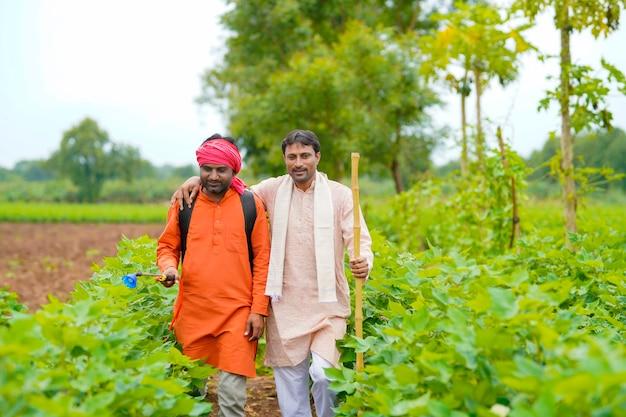 Twee indiase boeren werken en discussiëren op een groen katoenveld.