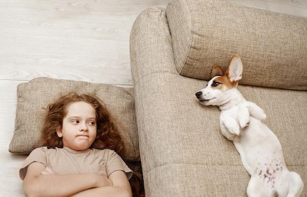Twee jack russell slapen op het bed, en de eigenaar van het meisje slaapt op de vloer.