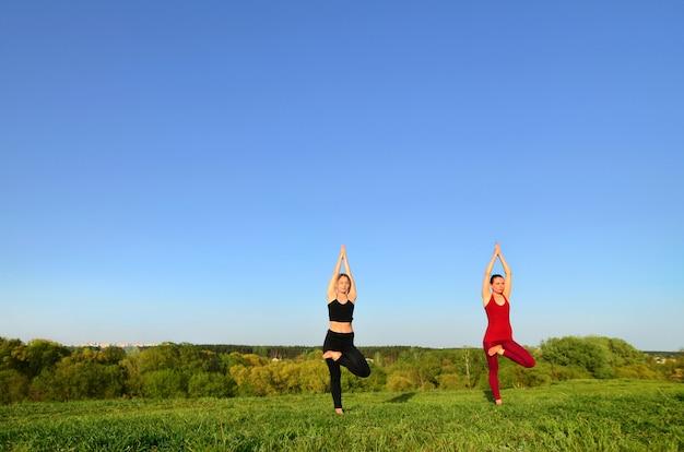 Twee jonge blonde meisjes in sportpakken beoefenen yoga