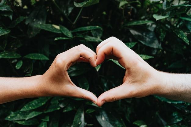 Twee jonge handen die een hartsymbool maken voor enkele groene installaties