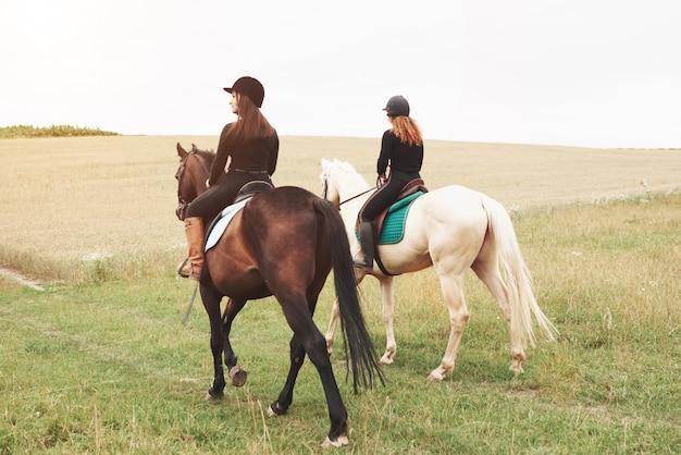 Twee jonge mooie vrouwen die paarden berijden op een gebied. ze houden van dieren en paardrijden