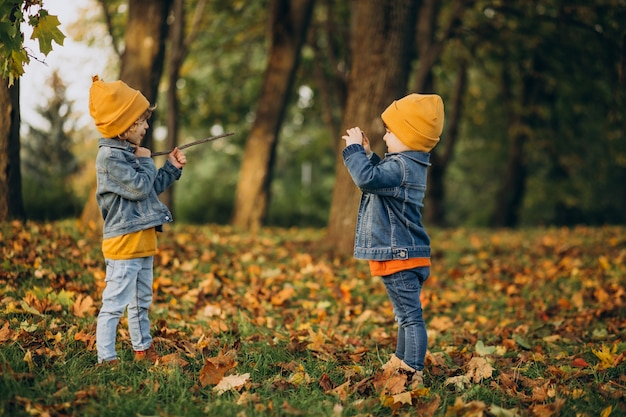 Twee jongensbroers die pret in park hebben