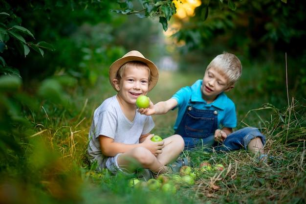 Twee jongensbroers zitten op het gras in een appelboomgaard en voeren elkaar appels