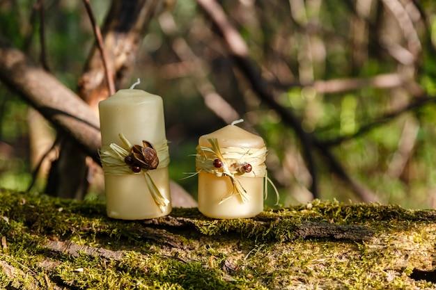 Twee kaarsen op een oude login in het bos