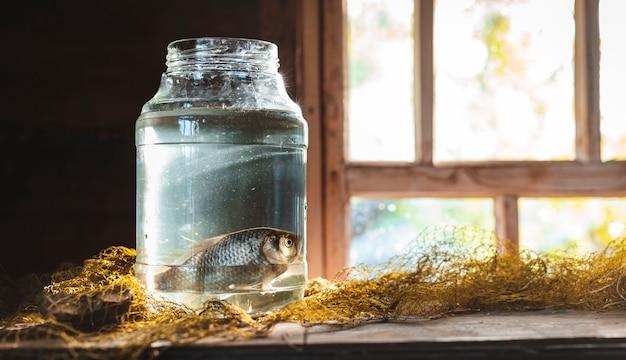 Twee karper vissen in een glazen pot op de tafel met een visnet. stilleven vissen.