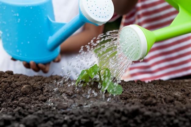 Twee kinderenmeisje die jonge boom met water gevende pot samen water geven