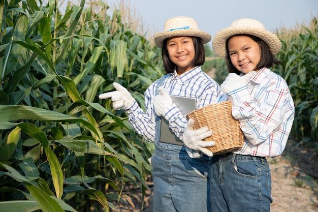Twee klein meisje raadplegen en zie product tracking in maïsveld. maïsproducten worden gebruikt om voedsel voor mens en dier te produceren. landbouw concept.