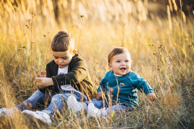 Twee kleine baby broers zitten samen in veld