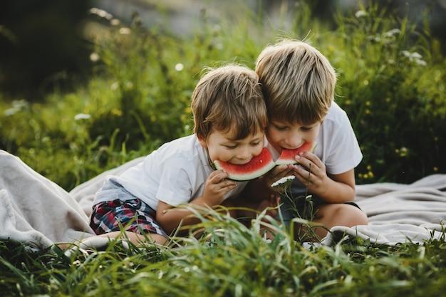 Twee kleine broers hebben plezier liggend op een groen veld in de stralen