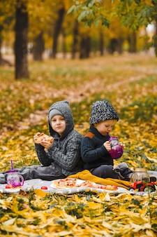 Twee kleine jongens broers zitten op plaid in park en drinken eten zelfgemaakte pizza rode appels