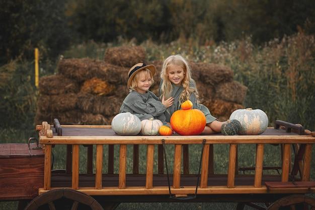 Twee kleine mooie kindermeisjes samen op een houten kar met kleurrijke pompoenen