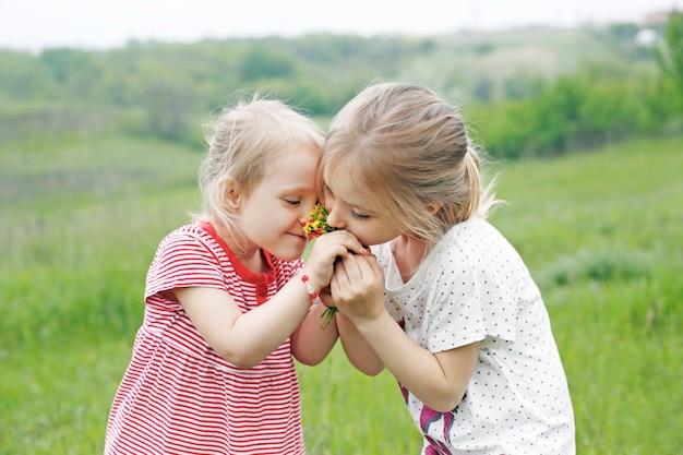 Twee kleine schattige meisjes broers en zussen ruiken bloemen op de weide