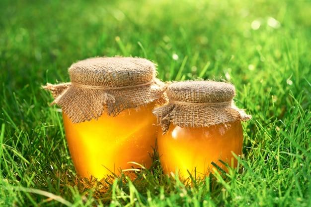 Twee kruiken natuurlijke honing op het gras, selectieve nadruk.