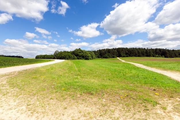 Twee landelijke wegen zonder asfalt, door een weiland met groen gras