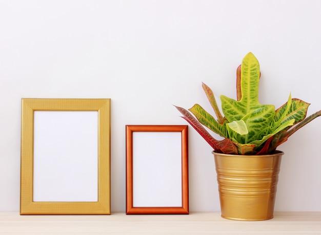 Twee lege gouden frames voor afbeeldingen en kamerplant op de tafel op een lichte achtergrond.