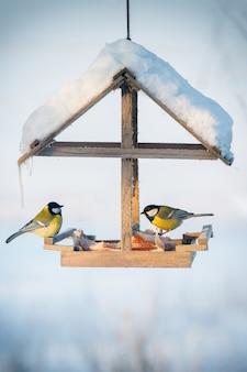 Twee meesjes voeden in de besneeuwde wintervogelvoeder