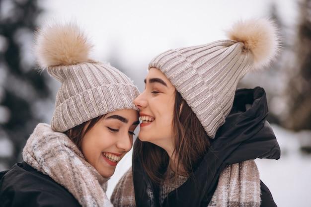 Twee meisjestweelingen samen in de winterpark