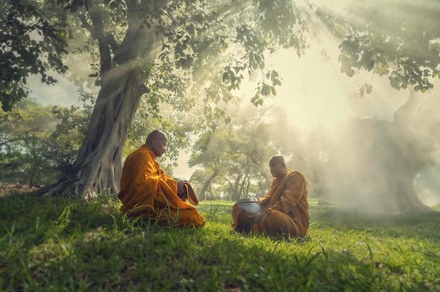 Twee monnikenmeditatie onder de bomen met zonnestraal, het concept van de boeddhegodsdienst