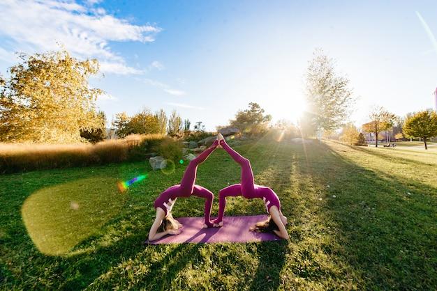 Twee mooie en gelukkige jonge vrouwen die yogaoefeningen doen en in het park op een zonnige dag in close-up