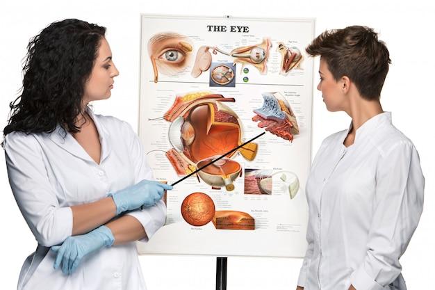 Twee opticien of oogarts vrouwen vertellen over de structuur van het oog