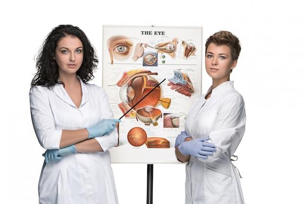 Twee opticien of oogartsvrouwen die vertellen over de structuur van het oog