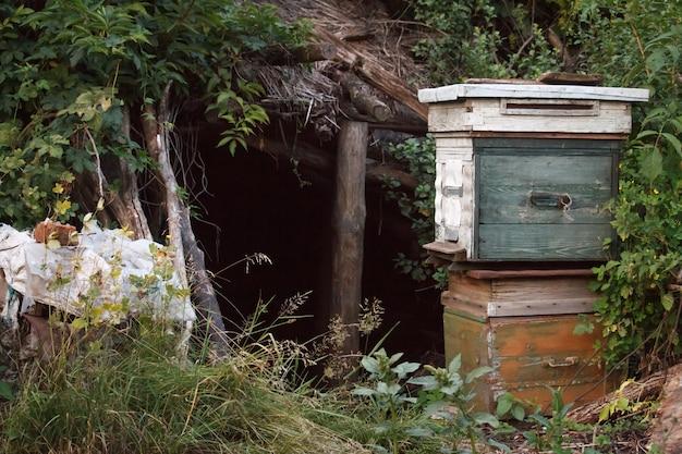Twee oude houten gesloten bijenkorven
