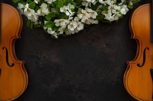 Twee oude violen met strijkstok en bloeiende appelboomtakken.