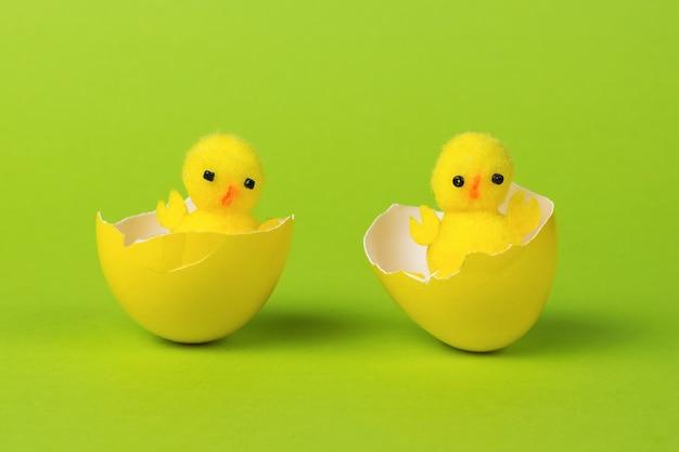 Twee pasgeboren kippen in een gele schelp op een groene achtergrond.
