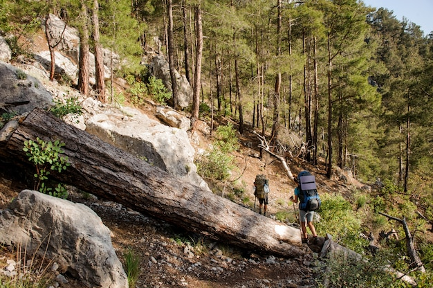 Twee reizigers met rugzakken wandelen in het bos
