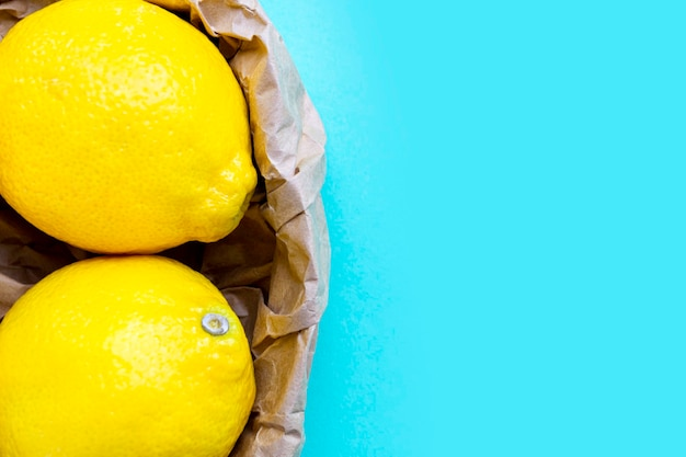 Twee rijpe citroenen in de recycling van papieren zak